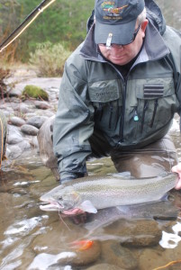 A beautiful wild Sandy River Steelhead, taken in less than perfect conditions