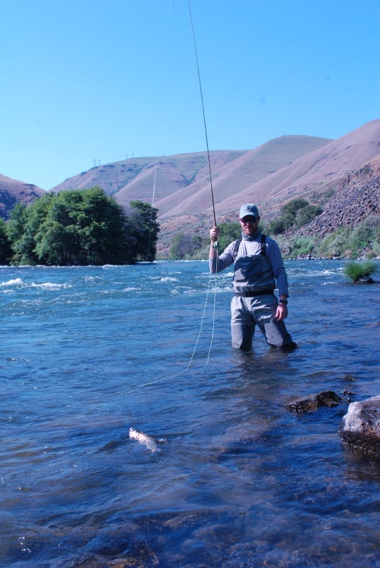 Deschutes river trout fishing report all waters angling for Deschutes river fishing report