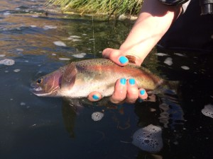 The nails may clash but the fish did not mind!!